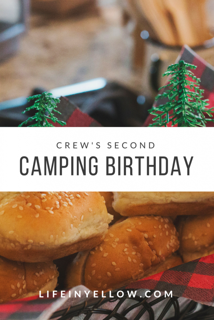 Crew's Second Camping Birthday